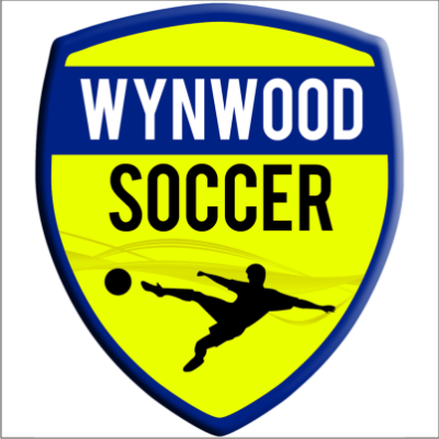 indoor soccer in wynwood miami logo